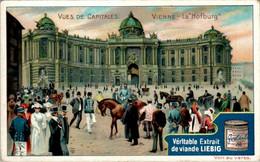 """CHROMO LIEBIG - Vues De Capitales Autriche Vienne La """" Hofburg """" .... Série Belge N°806 E) - Année 1905 En TB.Etat - Liebig"""