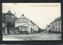 CPA - BLAIN - Rue Du Calvaire, Route Du Gâvre, Animé - Blain
