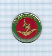 Pin's Fuji Yama Club De Judo Et Arts Martiaux Rillieux La Pape – 69 Rhône - Judo