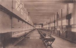 Spezia - Regia Scuola Specialisti - Lavandini Viaggiata 1924 - La Spezia