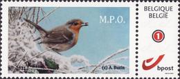 Buzin Roodborstje Rouge Gorge Mystamps Gegomd Wit Papier - Personalisierte Briefmarken