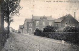 Belgique - Gingelom - Goyer - La Distillerie De Hasselbrouck - N° 5 - Edit Laflotte - Gingelom