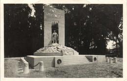 Carte Photo Monument A LA GLOIRE DES DIABLES BLEUS  RV - Fotografia