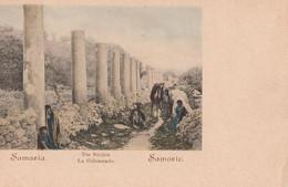 Cartolina - Postcard / Non Viaggiata - Unsent /  Samaria - La Colonnade. - Israele