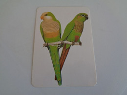 Birds Oiseaux Aves Manuel Da Costa & Filhos Porto Portugal Portuguese Pocket Calendar 1988 - Klein Formaat: 1981-90