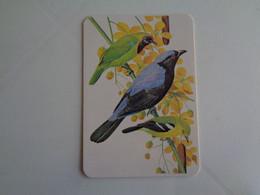 Birds Oiseaux Aves Gaiopas Porto Portugal Portuguese Pocket Calendar 1984 - Klein Formaat: 1981-90