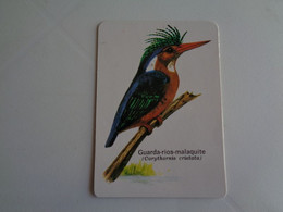 Birds Oiseaux Aves Guarda Rios Malaquite Gaiopas Porto Portugal Portuguese Pocket Calendar 1986 - Klein Formaat: 1981-90