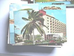 Aruba Palmboom Hotel - Aruba