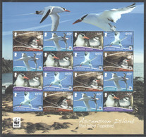 XX302 LAST ONE IN STOCK 2011 ASCENSION ISLAND WWF FAUNA BIRDS RED-BILLED TROPICBIRD MICHEL 30 EURO 1SH MNH - Nuevos