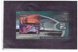 BF776  -  NUOVA ZELANDA   /     MICHEL  BLOCK Nr.  89  USATO   - Y&T.  BF.  128 - Blocchi & Foglietti