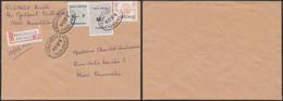 école Postale (1987) 9F + 50F + Elström Surcharge SPECIMEN Sur Lettre En R De école Postale / Charleroi > Péruwelz - 1970-1980 Elström