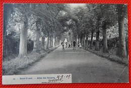 SINT TRUIDEN -  SAINT TROND  -  Allée Des Soupirs - Sint-Truiden