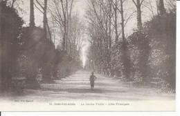 10 - SIDI-BEL-ABES - LE JARDIN PUBLIC - ALLEE PRINCIPALE (  Animées  ) ALGERIE - Sidi-bel-Abbès