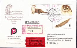 DDR GDR RDA - Umschlag Fischotter (MiNr: U7 1b-87 Alt: C1b) 1987 - Siehe Scan - Privatumschläge - Gebraucht