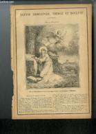 Vies Des Saints N° 557 - Sainte Ermelinde, Vierge Et Recluse - Fête Le 29 Octobre - Collectif - 0 - Religion