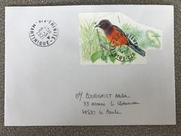 Lettre Avec Timbre Oriole De Martinique Oblitération Trinité 05/03/2021 Cachet Rond - Storia Postale