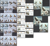 XX638 IMPERFORATE, PERFORATE 2012 BURUNDI BIRDS RAPACES 12KB+2BL+10 LUX BL MNH - Aigles & Rapaces Diurnes