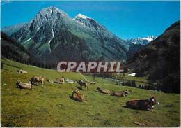 CPA Klosters Graubunden Schweiz Alp Pardenn Mit Canardhorn Vereina Weisshorn - GR Grisons