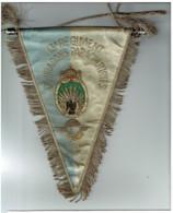 Fanion 13 RDP Parachutiste - Flags