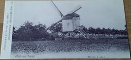 Meise Wolvertem Wolverthem Moulin á Vent Windmolenkouter 1686-1914 - Meise