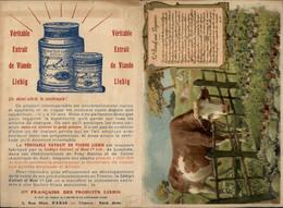PUBLICITE - LIEBIG - VIANDOX - Werbung