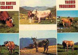 Animaux - Vaches - Hautes-Vosges - Vaches Vosgiennes - Multivues - CPM - Voir Scans Recto-Verso - Koeien