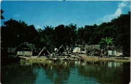CPM AK Greetings From Suriname (640046) - Surinam