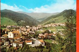 08295 COLLIO VAL TROMPIA BRESCIA - Brescia