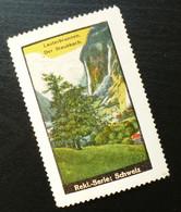 Poster Stamp Vignette Cinderella Switzerland Lauterbrunnen  Valley Staubbach B164 - Erinnofilia