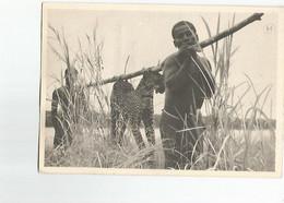 Timbre Publicite Ionyl  1952 Congo Belge - Unclassified
