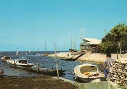 Taussat Les Bains   Le Port  Edit  Artaud  No.7 - Other Municipalities