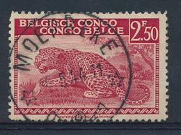 MOERBEKE :  Prachtstempel Op Nr 228 - 1923-44: Used