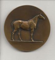 """France Médaiile En Bronze Du Graveur V.Peter  """" Offert Par Le Conte D'Harcourt Sénateur """" ( Concours Hippique,cheval ) - Professionals / Firms"""