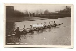 Cambridge Boat Crew Of 1908 - Rowing - Old Real Photo Postcard - Aviron