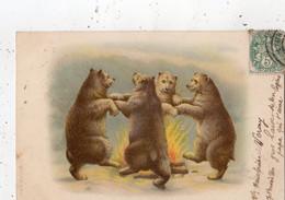 OURS HUMANISES QUI DANSENT AUTOUR DU FEU  (CARTE PRECURSEUR ) - Bears