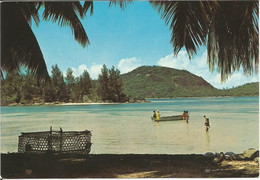 Ile Thérèse  -   Port Glaud -   Seychelles. (scan Verso) - Seychelles
