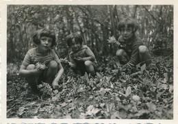 Snapshot Forêt Du Der 1934 Trois Enfants Cueillent Du Muguet Fleurs Flowers - Persone Anonimi