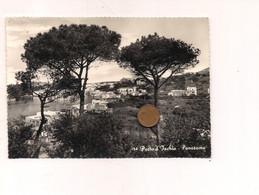 MM376 Campania PORTO D'ISCHIA Napoli 1956 Viaggiata - Otras Ciudades