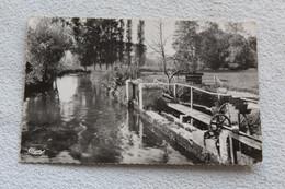 Cpsm 1957, Hondouville, Les Landes, Eure 27 - Autres Communes