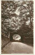 REAL PHOTOGRAPHIC POSTCARD - THE ROARING BRIG - KILBARCHAN - RENFREWSHIRE - LOCAL PUBLISHER - Renfrewshire