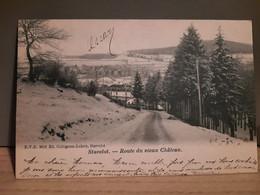 Stavelot - Route Du Vieux Chateau - Envoyé En 1903 à Verviers - état Parfait - Stavelot