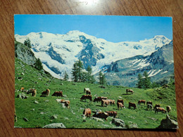 Cartolina Viaggiata Nel 1989 - Aosta