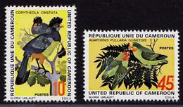 Kamerun Cameroon Vögel Birds Animals 1972 Satz ** MNH  (9072 - Otros