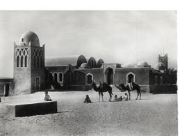 Afrique  Un Bordj Dans Le Desert Chameau Animée Mosquée - Western Sahara