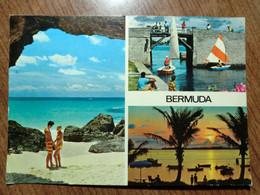 Cartolina Viaggiata Nel 1980 - Bermuda