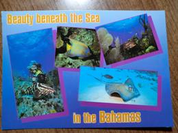 Cartolina Viaggiata Nel 1993 - Bahamas