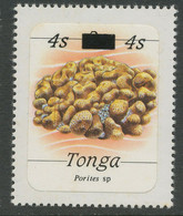 TONGA 1986  Marine Animals 4 S On 2 S Porites Sp. U/M Rare ERROR/VARIETY - Tonga (1970-...)