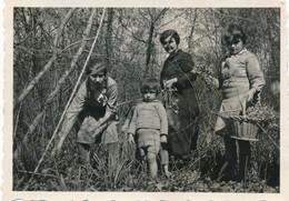 Snapshot Forêt Du Der 1934 Enfants Et Femme Cueillette Plantes Fleurs Panier - Persone Anonimi