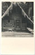 Santigron, Bosnegerwoning Te Santigron - Surinam
