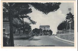 Castiglioncello - Via Aurelia - Von 1928 (4760) - Livorno